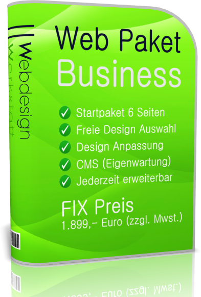 Webdesign Paket Business